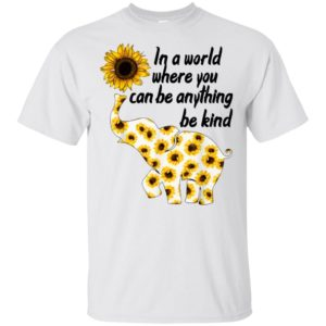 In a world where you can be anything be kind t-shirt, ladies tee, hoodie