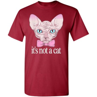 Friends Quotes Shirt It's Not a Cat Rachel Sphynx cat Shirt, Ls, Hoodie