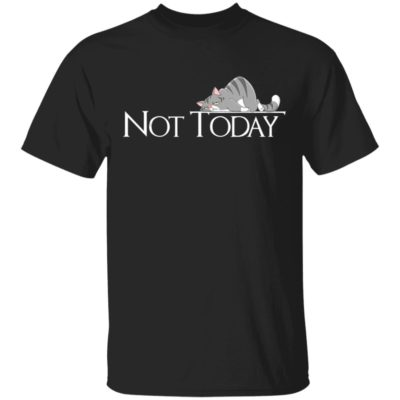 Not Today Lazy Cat Lady Kitten T-Shirt Long Sleeve Hoodie