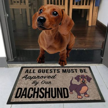all guests must be approved by our Dachshund Doormat