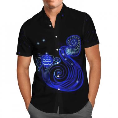 Aquarius Horoscope Hawaiian Shirt, Beach Shorts