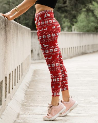 Dachshunds Christmas Legging High Waist Leggings for girls, Best legging for Women
